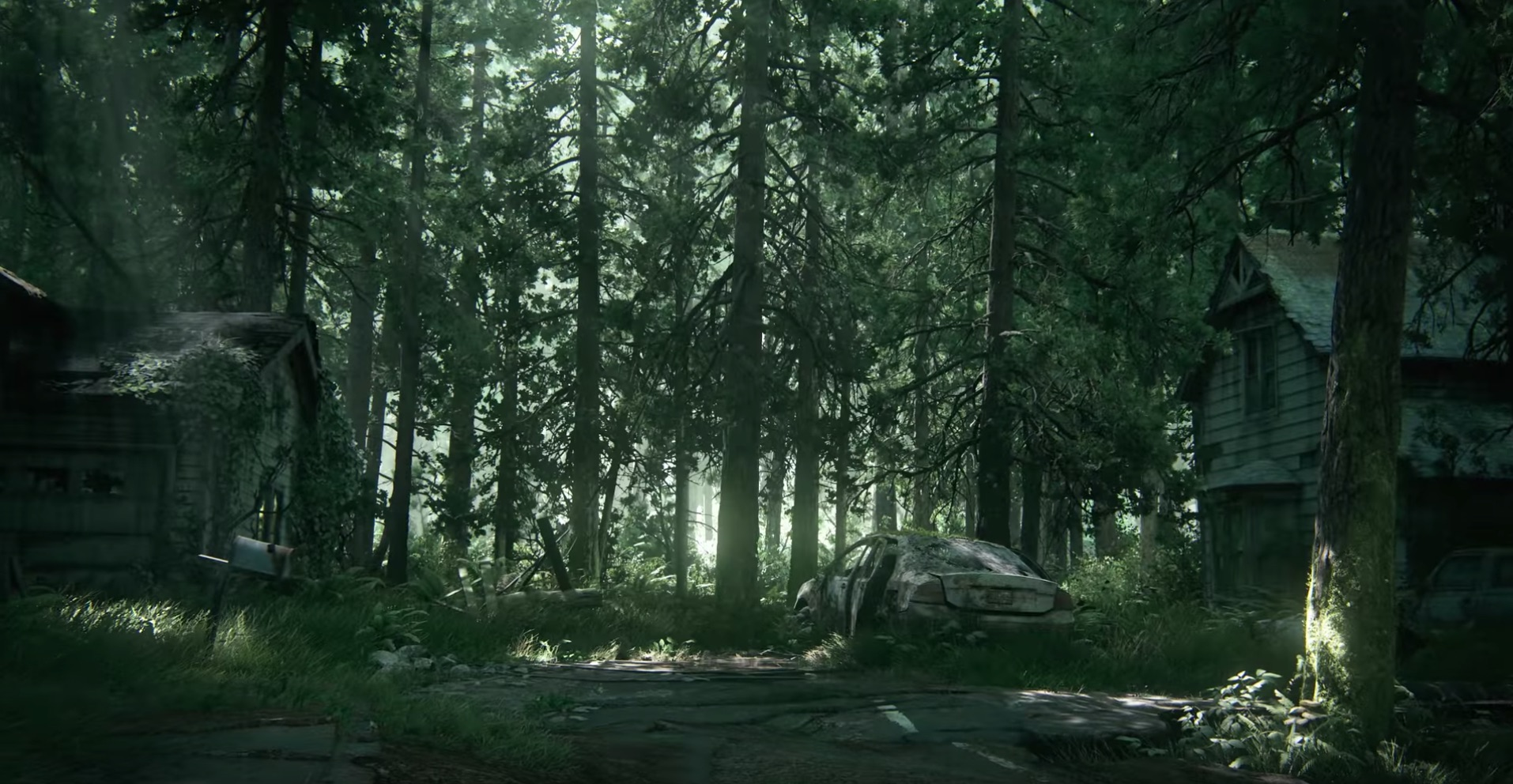 The third and fourth shots include a downed telephone pole and an old, abandoned car, and abandoned houses; we now know this takes place in the modern era or long after it, but still we're short on details.