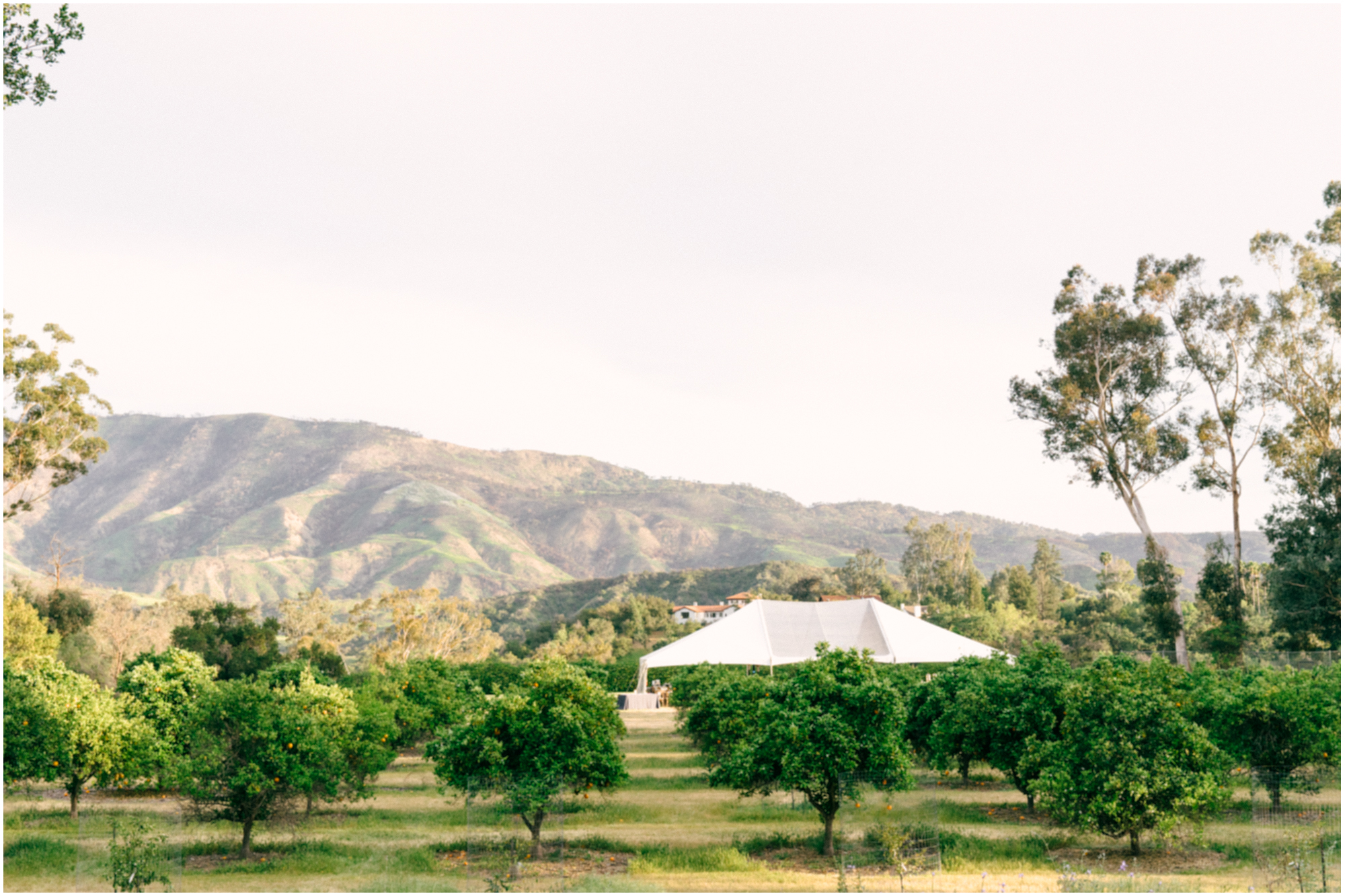 Los_Angeles_Wedding_Photographer_Ojai_Wedding_Pinnel_Photography-16.jpg
