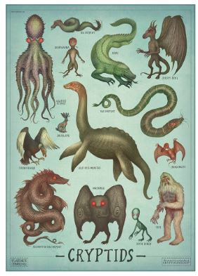 Cryptid reference guide.  Source