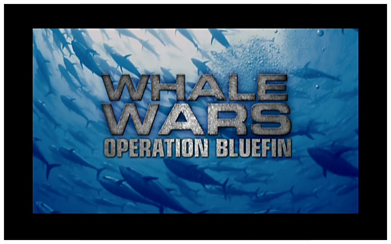 Bluefin.png
