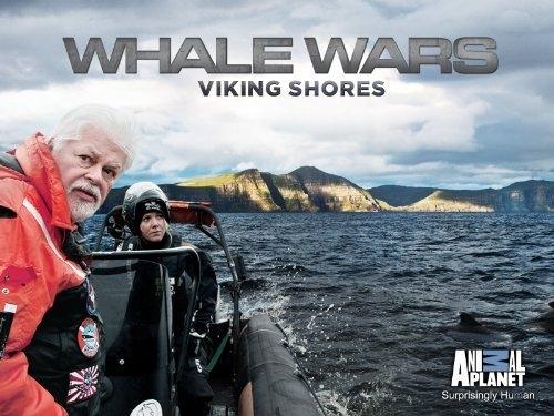 sea-shepherd-viking-shores 2.jpg