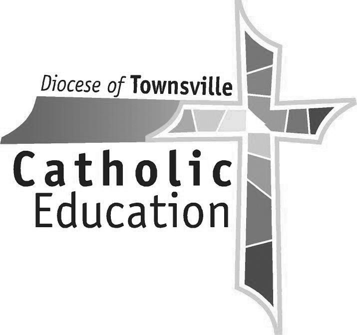 townsville-ceo-colour-logo.jpg