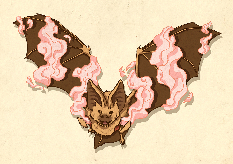 16_batsmoke.jpg