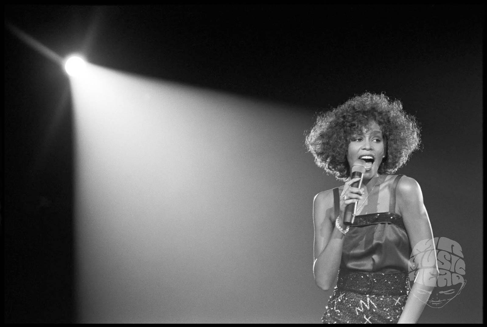 david corio_Whitney Houston.jpg