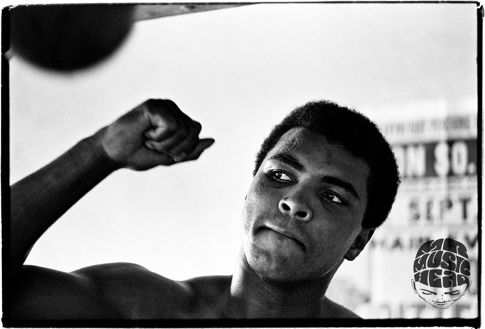 al satterwhite_Muhammad Ali-5.jpg