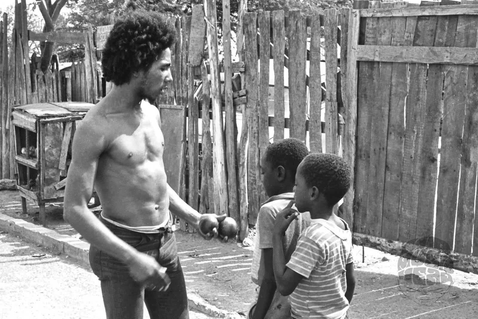 arthur gorson_Bob Marley Mango.jpg