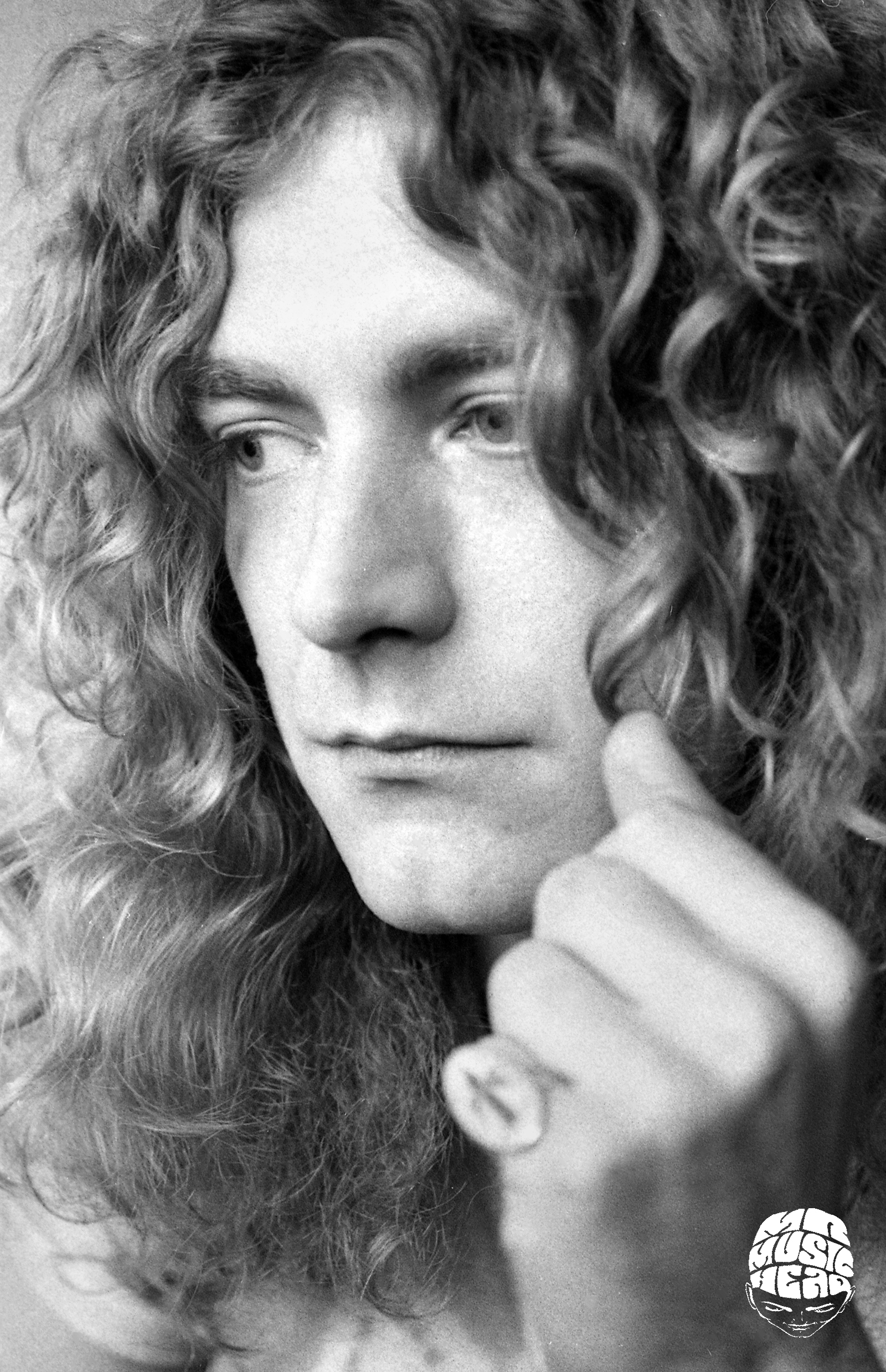 peter simon_robert plant.jpg