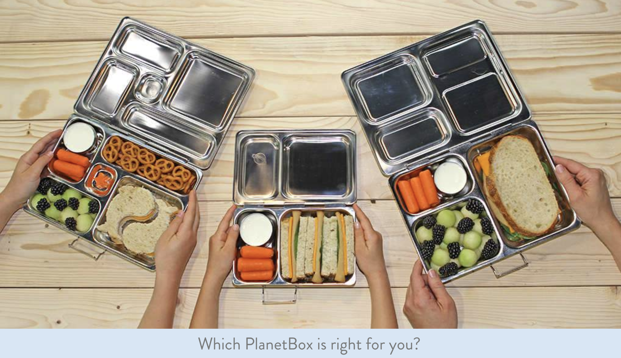 Click here  or on the image above to check out PlanetBox.