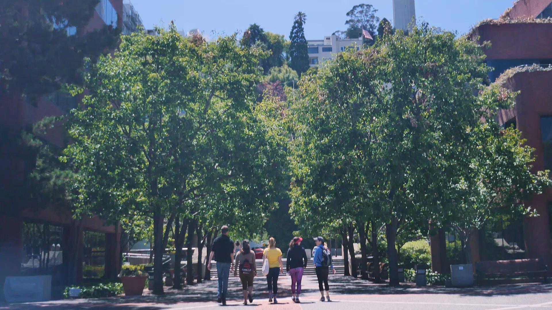 Urban Hike 1.jpg
