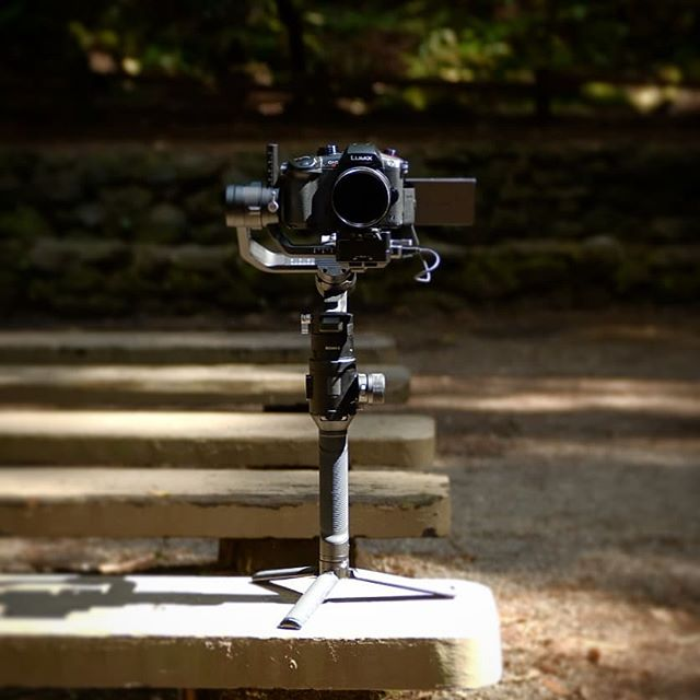The Panasonic Gh5s and DJI Ronin-S combo is the most freeing set up I have. Perfect for jumping between bus, forest, bus, winery.