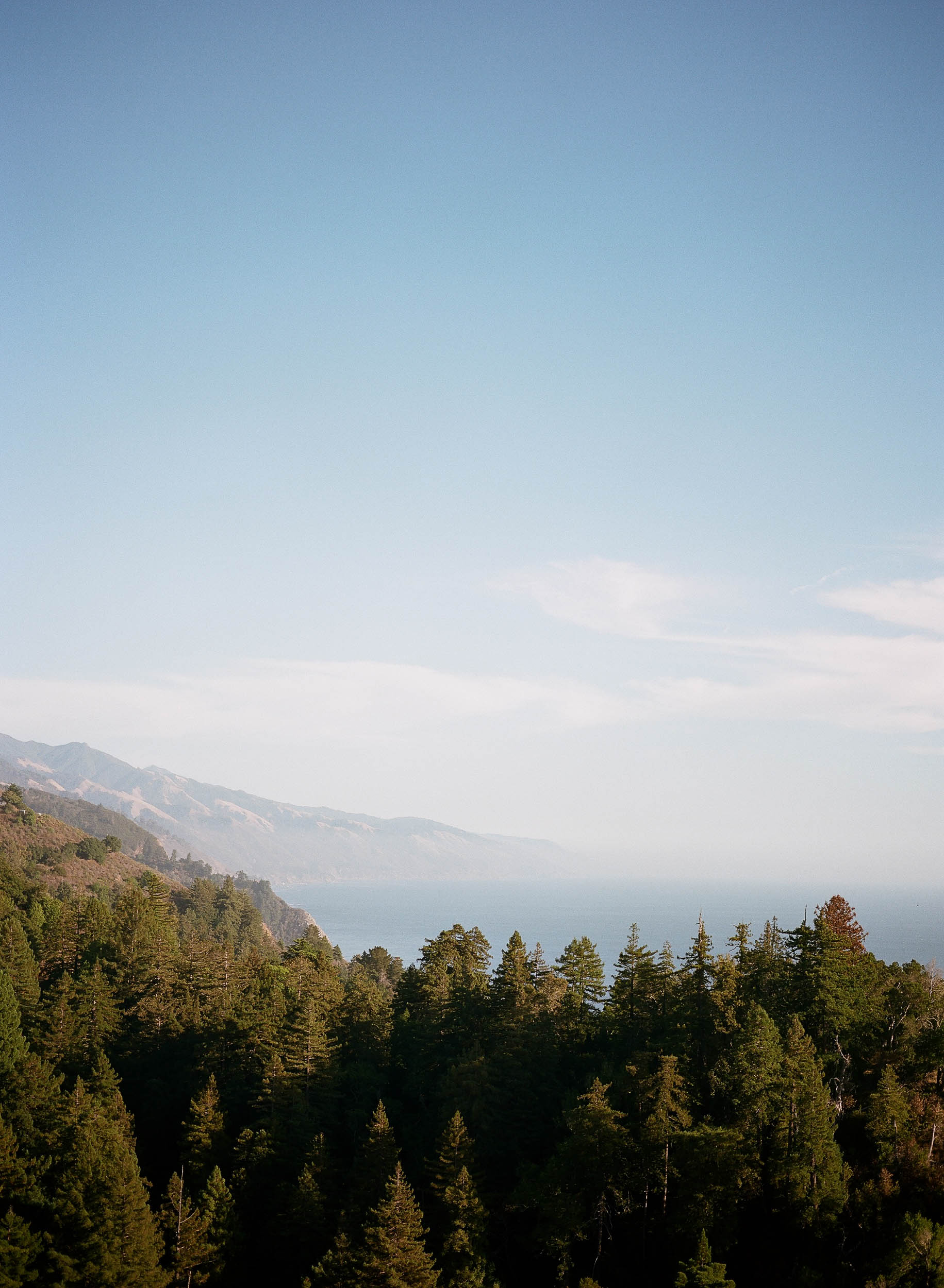 Ventana Big Sur Wedding_Buena Lane Photography.jpg