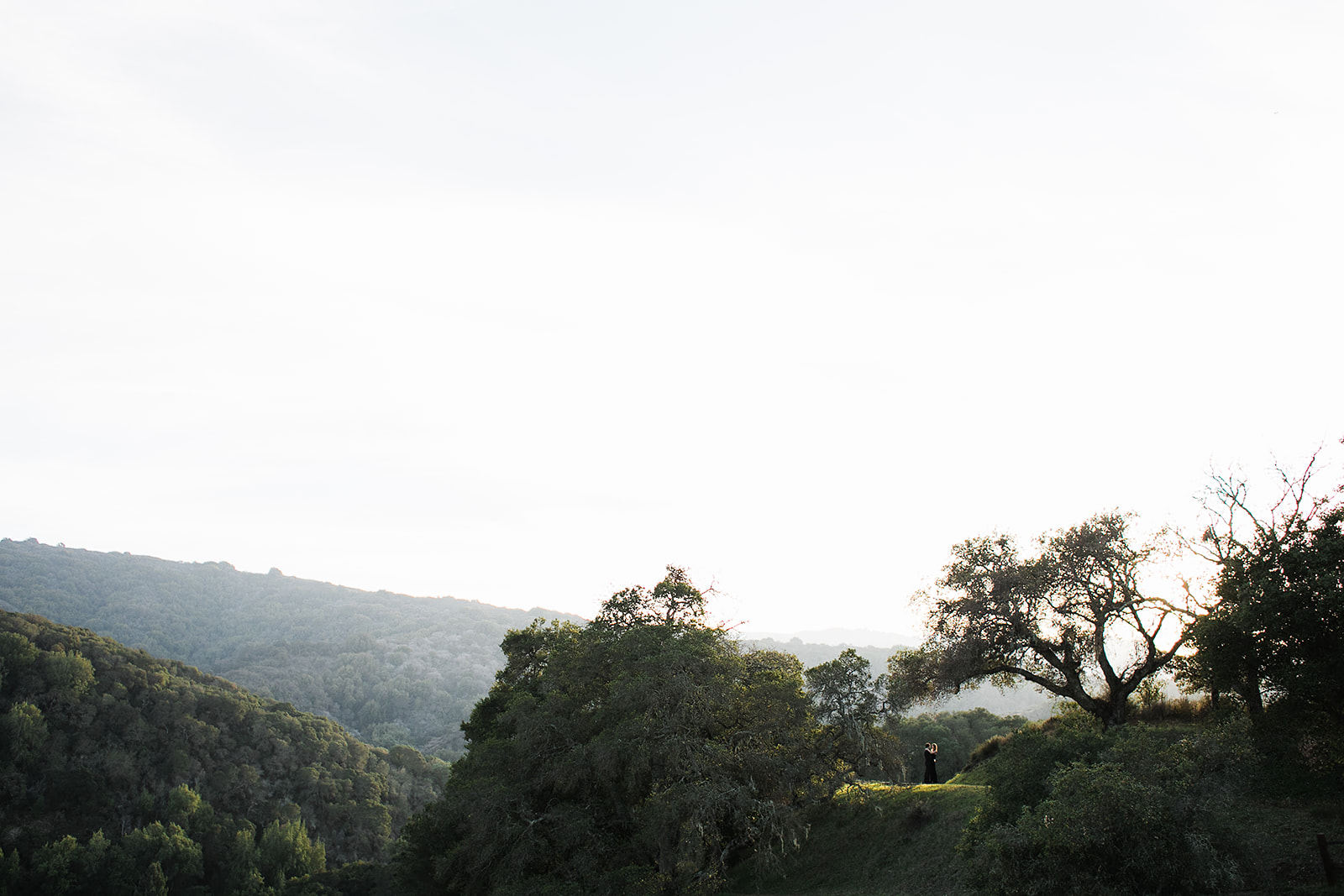Foothills Park Engagement Palo Alto Buena Lane Photography