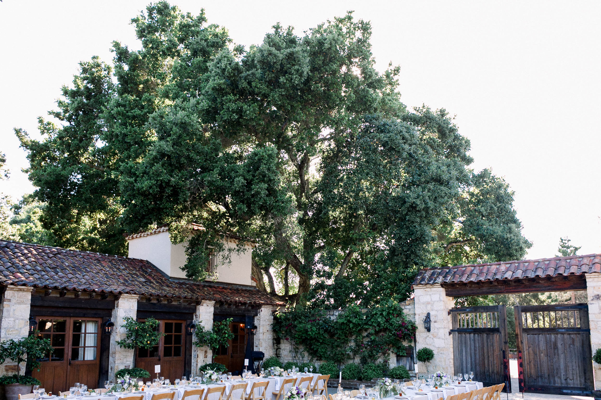 C+D_Holman Ranch Wedding_Carmel Valley_Buena Lane Photography_060619_ER447.jpg