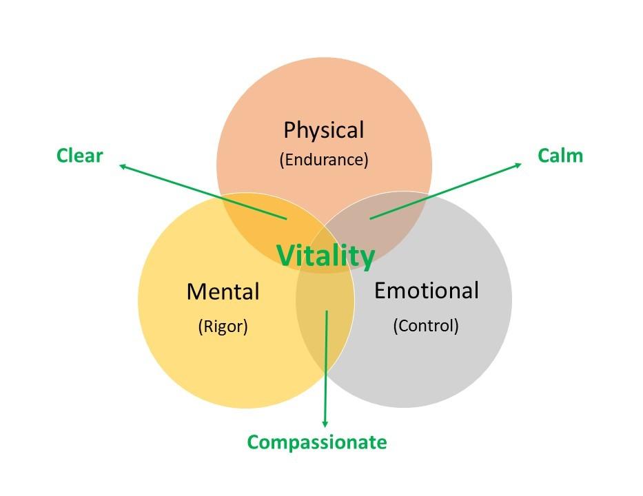 Vitality core model cropped.jpg