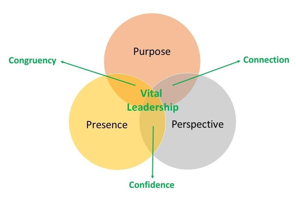 Vital+leadership+website+crop.jpg