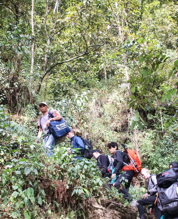 Trekking through the jungle like foliage of one of the many smaller mountains in Dhampus.