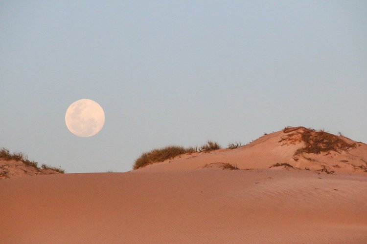 Surfing the Northwest of Australia - The North West of Aus. In these remote, arid stretches of red dirt and raw rugged plains, it's easy to immerse yourself in the land and disconnect from society and the habitual use of social media. In fact...