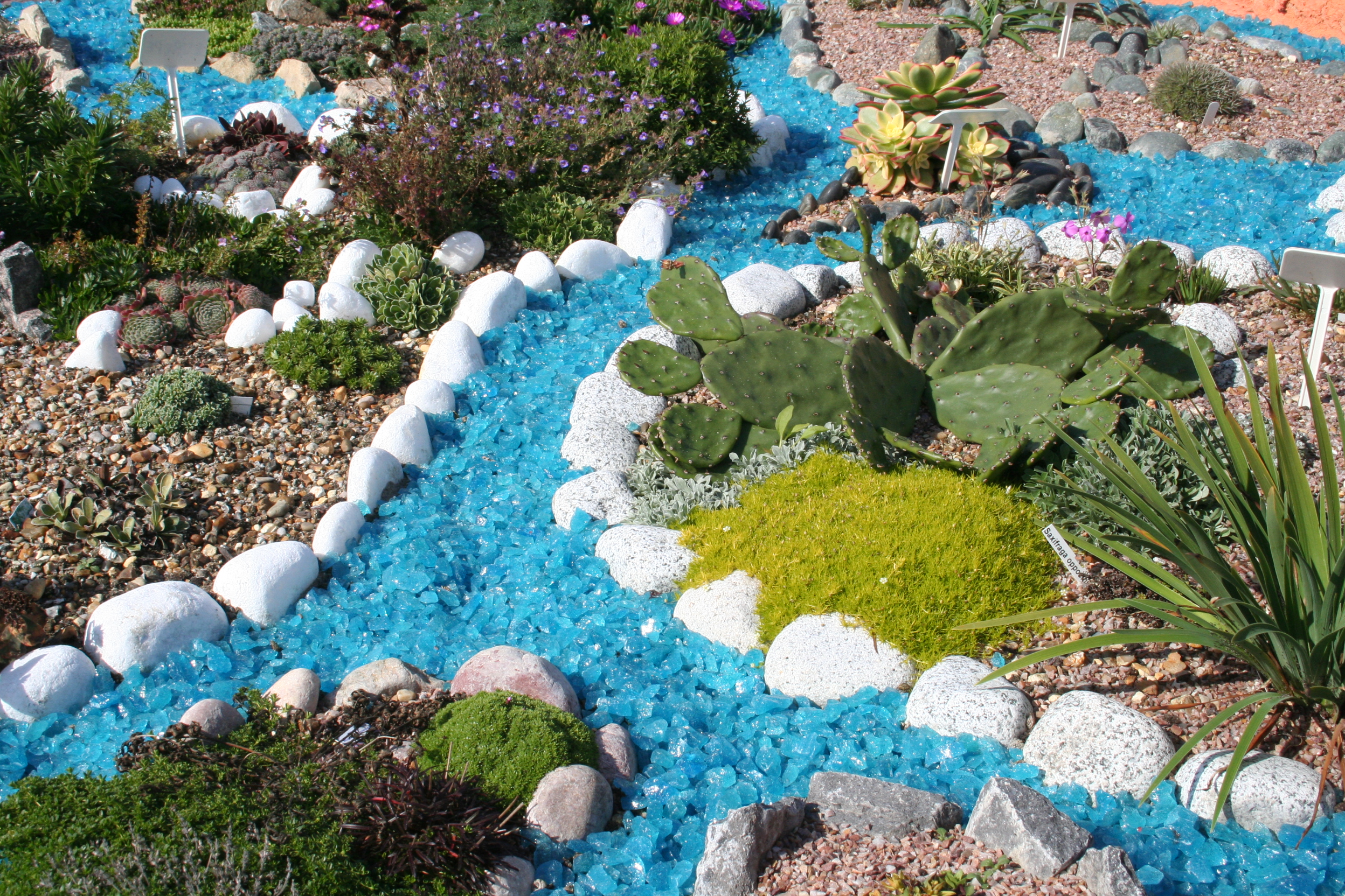 Miniature Alpine World Garden.JPG