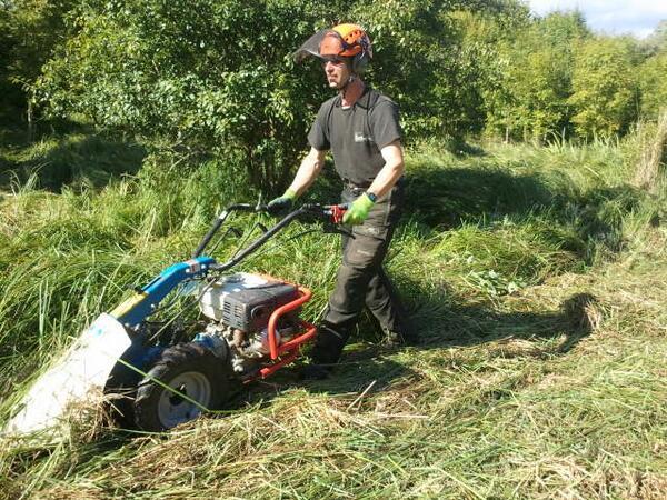 mowing meadow.jpg