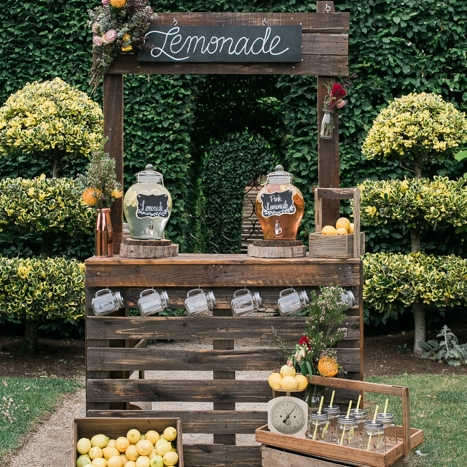 LEMONADE STANDS & CARTS -