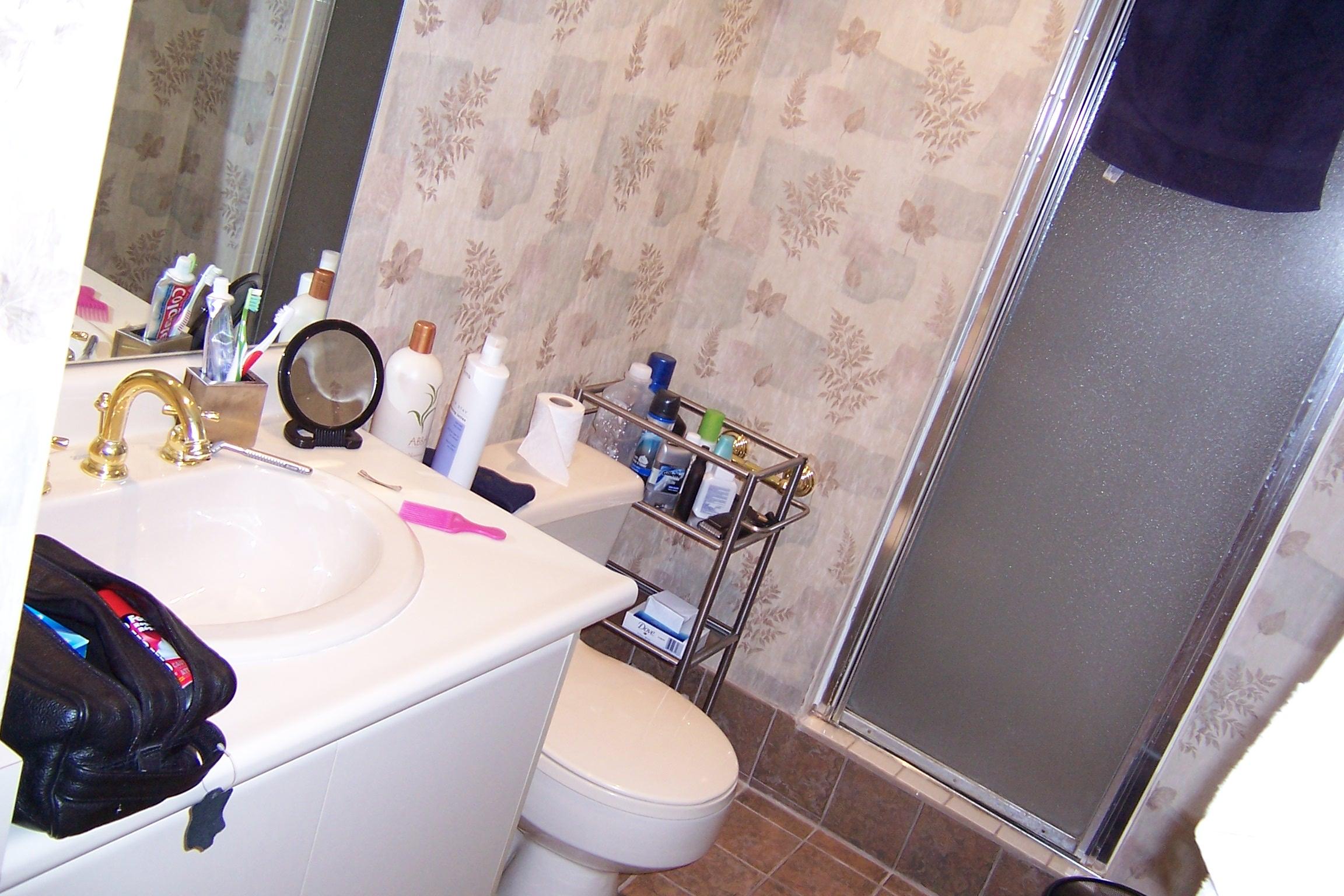 before2-bathroom.JPG