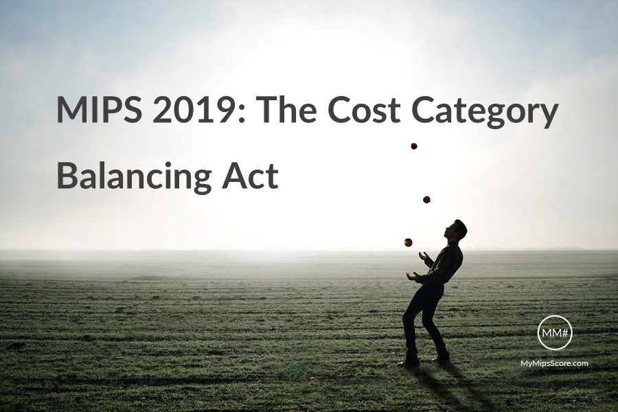MIPS-2019-Cost-Category-Overview.jpg