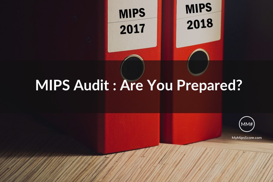 MIPS-Audit-MyMipsScore.jpg
