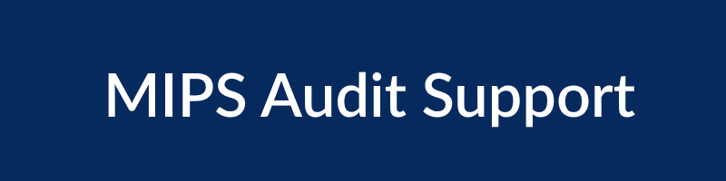 $1000 /Practice - Mock AuditBook of EvidenceAudit Appeal Support(for a performance year)