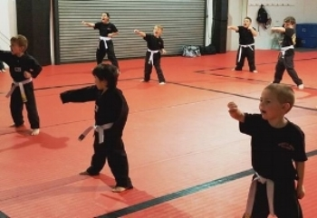 martial arts 2.jpg