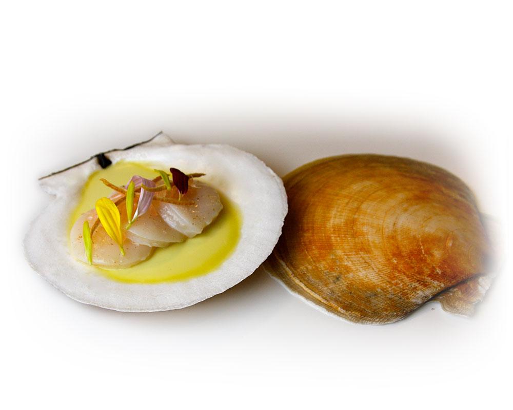 tasting_counter_sea_scallop_pomelo_preserved_lemon_avocado_cream_1.jpg