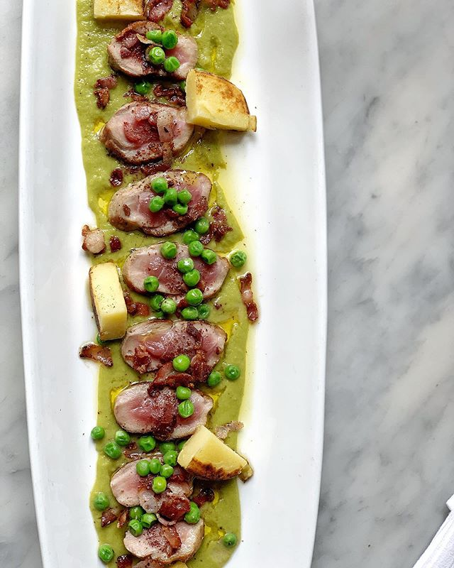 Maple Leaf Farm Peking Duck breast, green peas and pancetta. #baroloristorante #baroloseattle