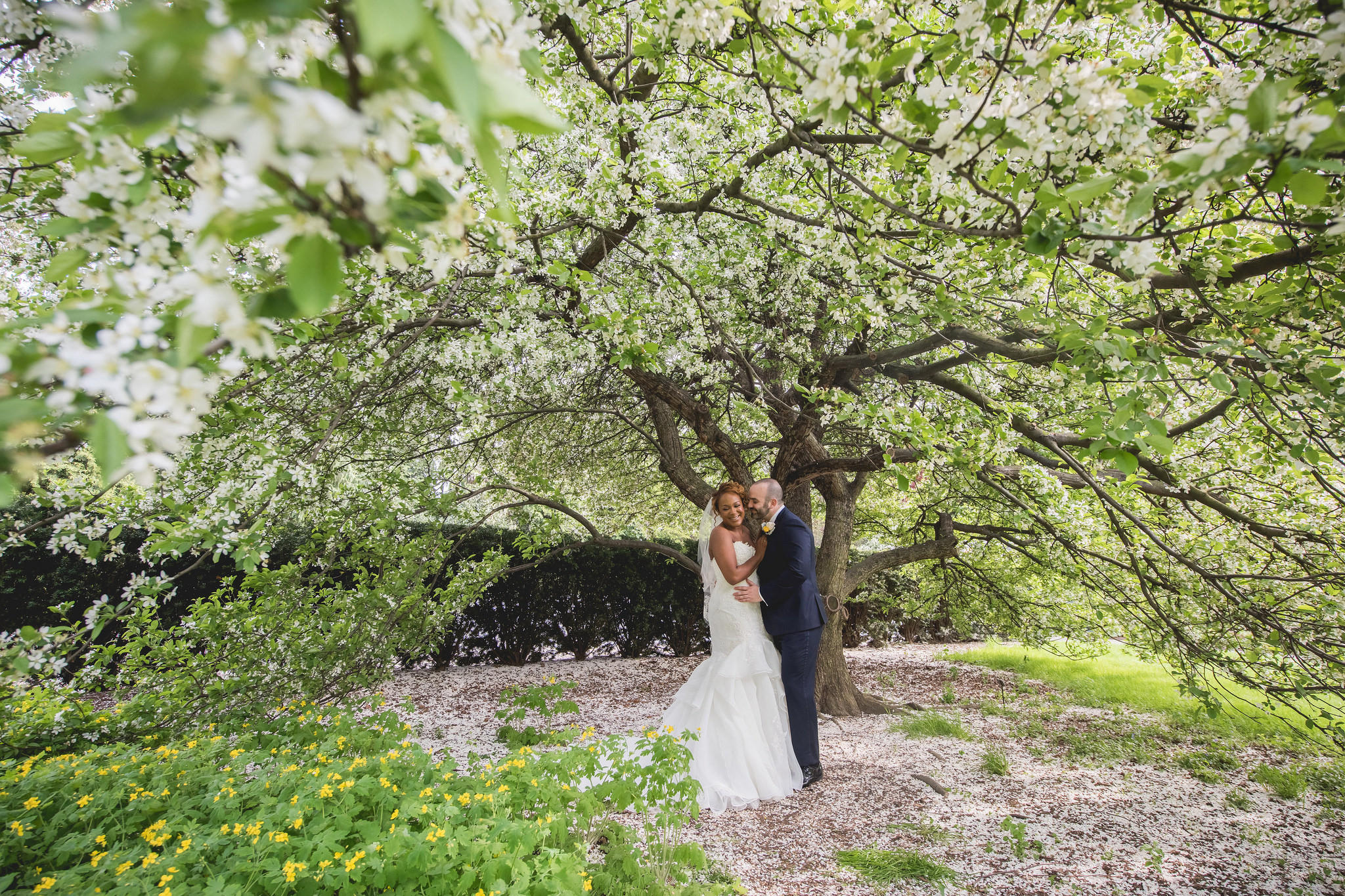 The perfect cherry blossom backdrop! Photo by Heartfelt Studios.