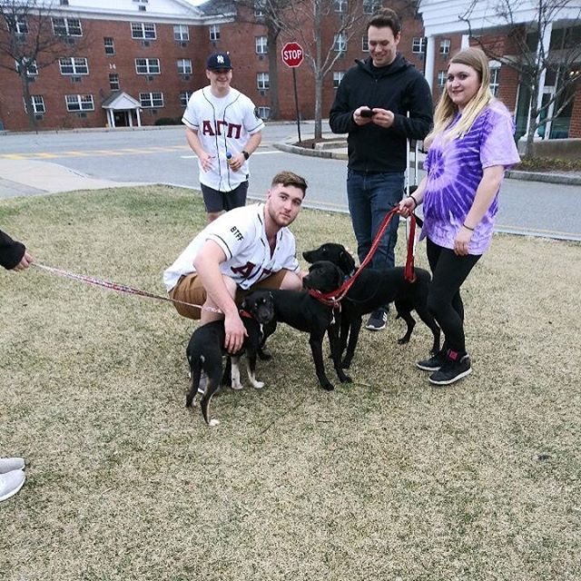 Our brothers enjoyed a great day helping raise money for Second Chance Animals!
