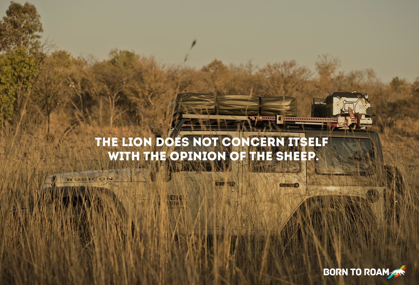 Lion-and-Sheep.jpg