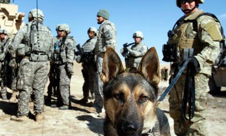 military service group.jpg