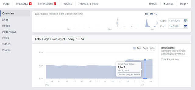 Facebook Total Page Likes - Insights Report