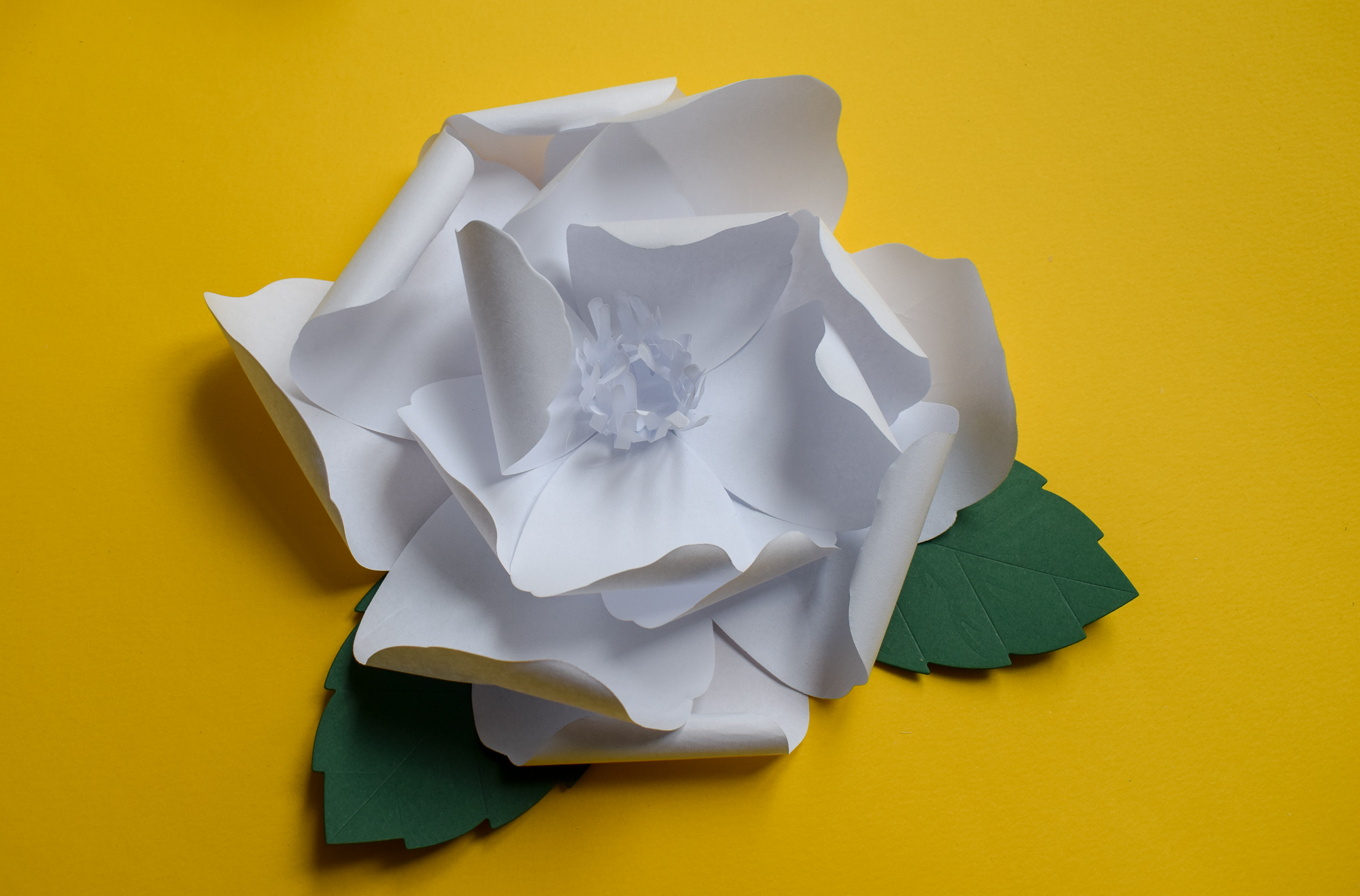 How to Make a Paper Flower with Sizzix's New Large Rose Die. Full tutorial at www.monicabadiu.com/diy-blog