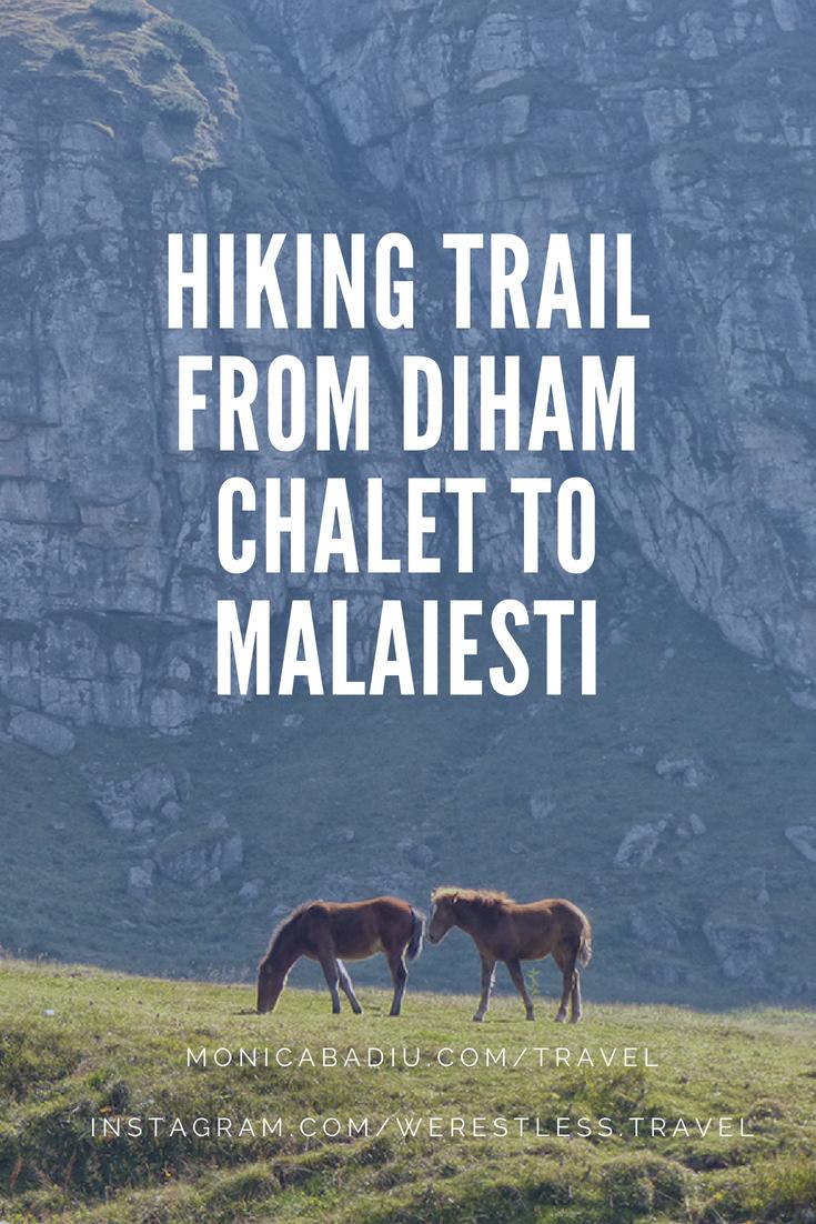 Hiking trail in Romania | Malaiesti Valley and Horses in Bucegi Mountains - www.monicabadiu.com/travel