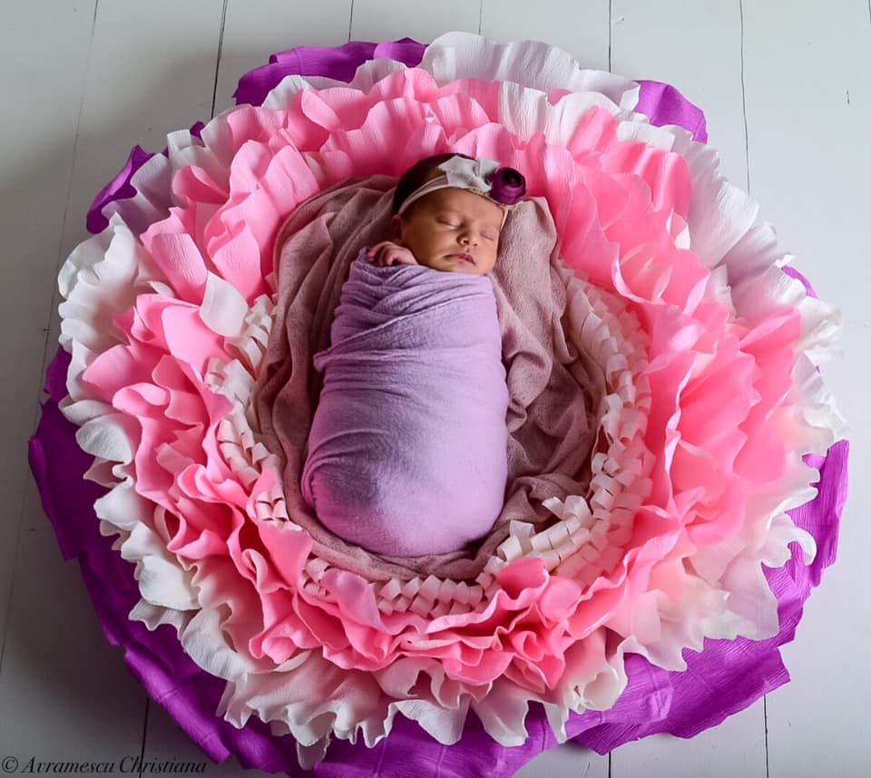 Cute Prop Idea for Newborn Photography: Huge Crepe Paper Flower #newbornphotography #paperflower #flowers #paper #crepepaper #giantflower #photography #homedecor #baby