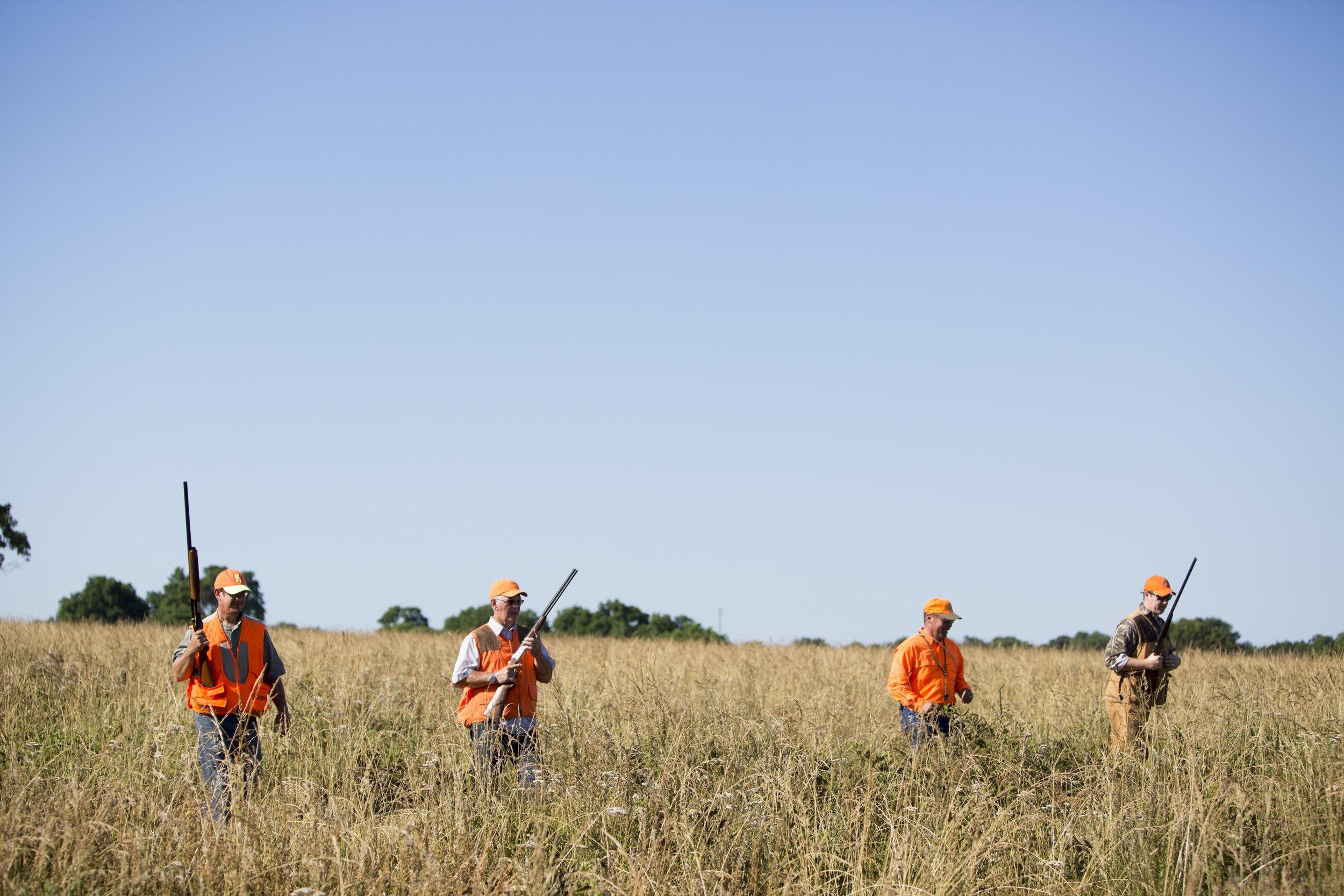 Quail Hunting in Oklahoma