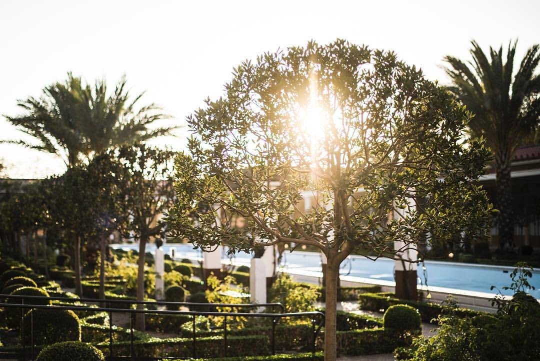 🙌🏽❤️🖖🏽  #losangeles #la #lalaland #malibu #gettyvilla #getty #sunset #❤️ #☀️ #🇺🇸 #califonia #californiadreamin #homeiswhetetheheartis #hammerfettbombekrass (at J. Paul Getty Museum Villa)