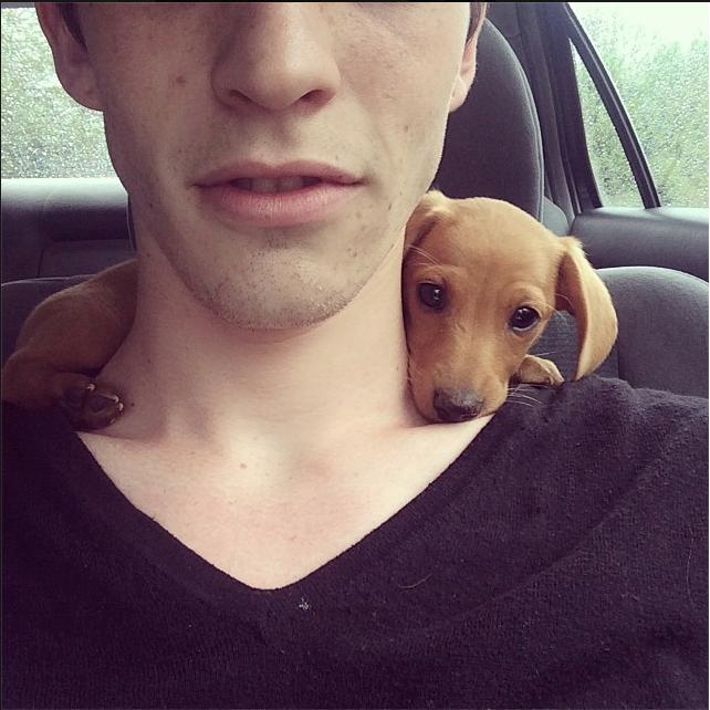 awwww-cute :     Doggie Neck Warmer! (Source:  http://ift.tt/2ftLm54 )