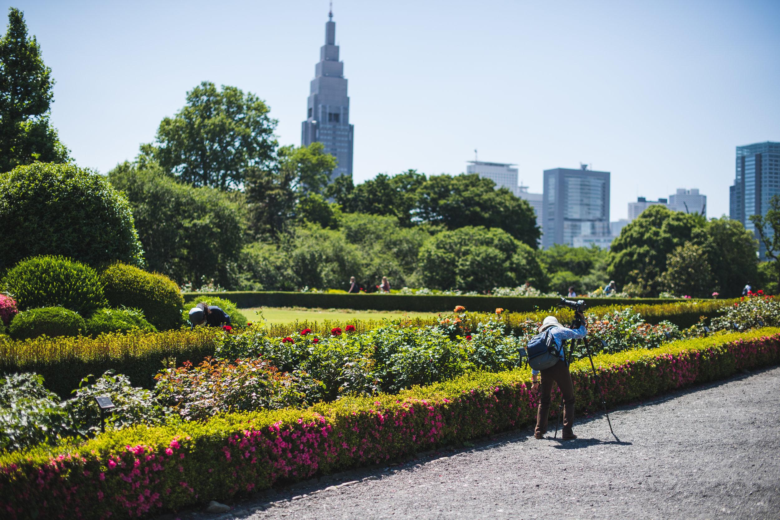 Tokyo2015-222.jpg