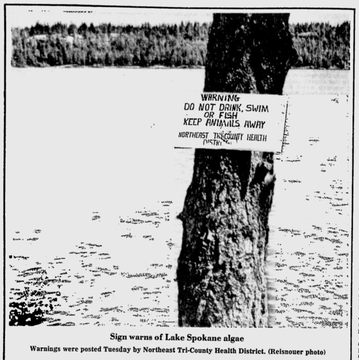 Warning: Do Not Drink, Swim, or Fish: Photo of sign posted at Lake Spokane, part of the of the Spokane River below the treatment plant, warning of toxic algae blooms caused from large amounts of phosphorous in the water. | Source: Spokesman-Review July 19, 1977.