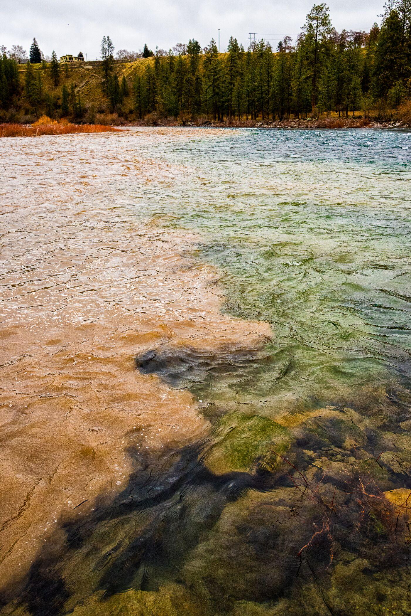 Sediment from Hangman Creek pollutes the Spokane River, burying fish nests and macroinvertebrates.
