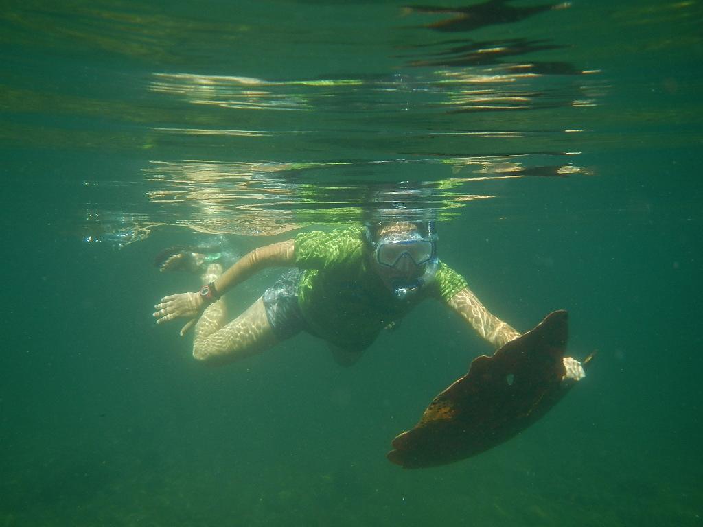 Our summer 2018 intern Jillian Howell snorkeling for trash.
