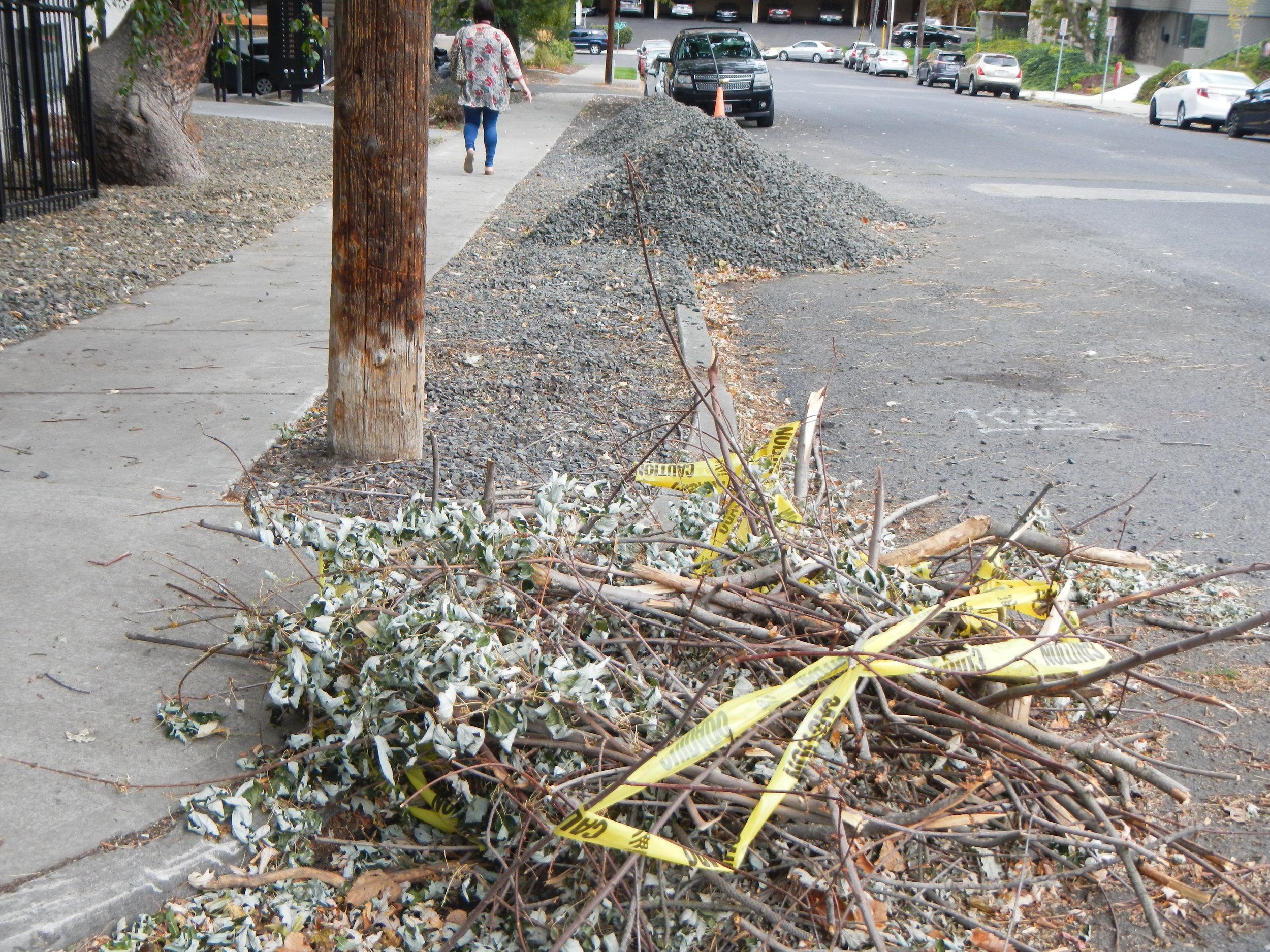 Debris blocking stormwater drain