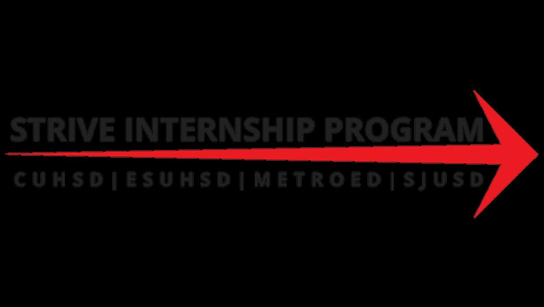 2017 Strive Summer Internship Program