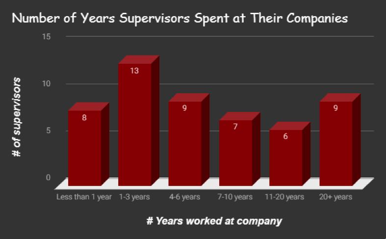 Silicon Valley CareerPath Internship