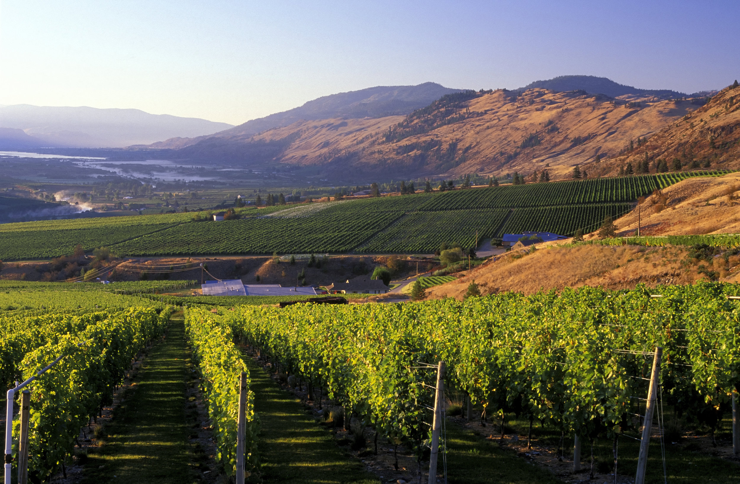 The South Okanagan's Golden Mile